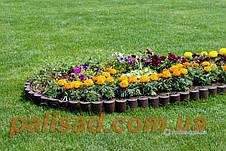Декоративный заборчик для сада-  3 метра в упаковке, садовый бордюр - Палисад Клумба, фото 2