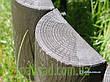 Декоративный заборчик для сада-  3 метра в упаковке, садовый бордюр - Палисад Клумба, фото 3