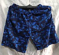Шорти літні чоловічі Пальми розмір норма 48-56, кольору міксом, фото 1