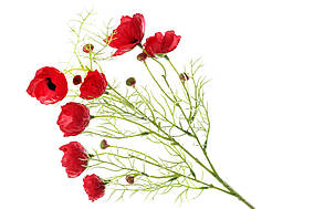 Декоративна гілка Маки, 73см, колір - червоний BonaDi 709-495