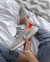 Кроссовки | кеды | обувь Boost 350   v2 Tail Light