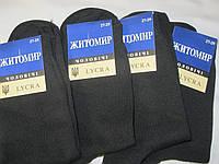 Носки мужские Житомирские упаковкой 12 шт.