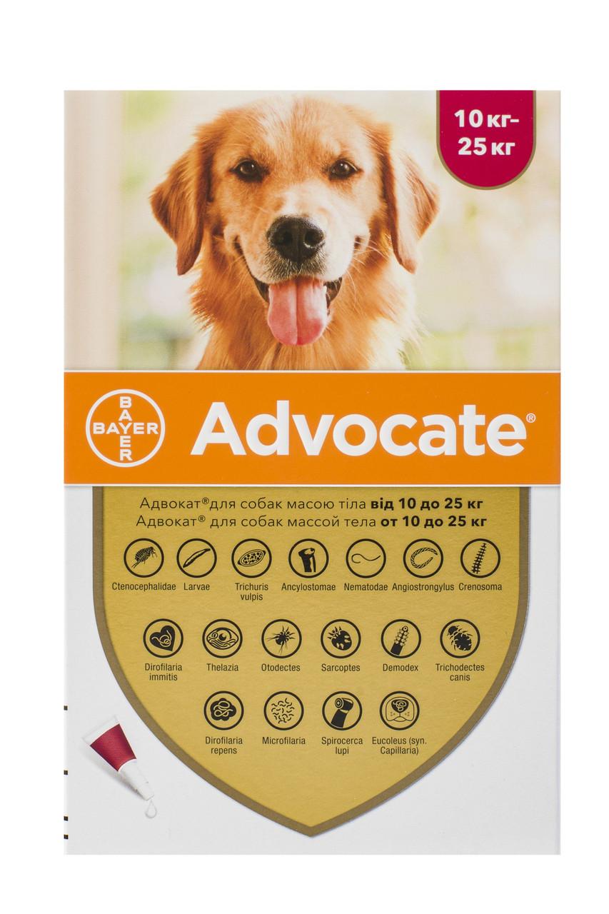 Краплі для собак від 10 до 25 кг від бліх, глистів та кліщів Адвокат Advocate Bayer 1 піпетка