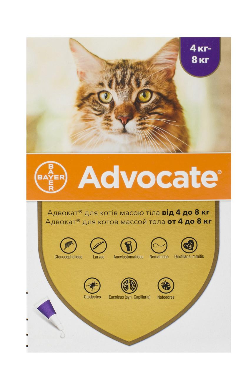 Краплі для кішок від 4 до 8 кг від бліх, глистів та кліщів Адвокат Advocate Bayer 1 піпетка