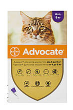 Капли для кошек от 4 до 8 кг от блох, глистов и клещей Адвокат Advocate Bayer 1 пипетка