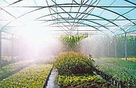 Як підвищити урожайність в теплиці з мінімальними витратами