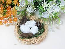 Гнездышко из соломы с мхом и яйцами