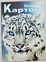 Білий картон 10 аркушів КОЛЕНКОР