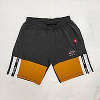 Шорти чоловічі трикотажні Nike розмір норма 48-56, колір уточнюйте при замовленні, фото 1