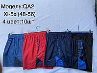 Шорты мужские спортивные пащевые Nike размер норма 48-56, цвета миксом
