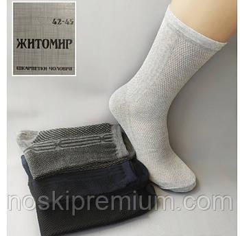 Носки мужские хлопок с сеткой Житомир, Украина, размер 42-45, ассорти, 080-005