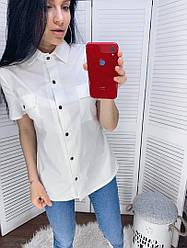 Жіноча сорочка коттон з короткими рукавами