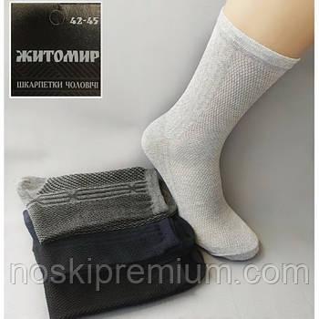 Шкарпетки чоловічі бавовна з сіткою Житомир, Україна, розмір 42-45, асорті, 080-006