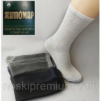 Шкарпетки чоловічі з сіткою х/б без лайкри Житомир, Україна, 080