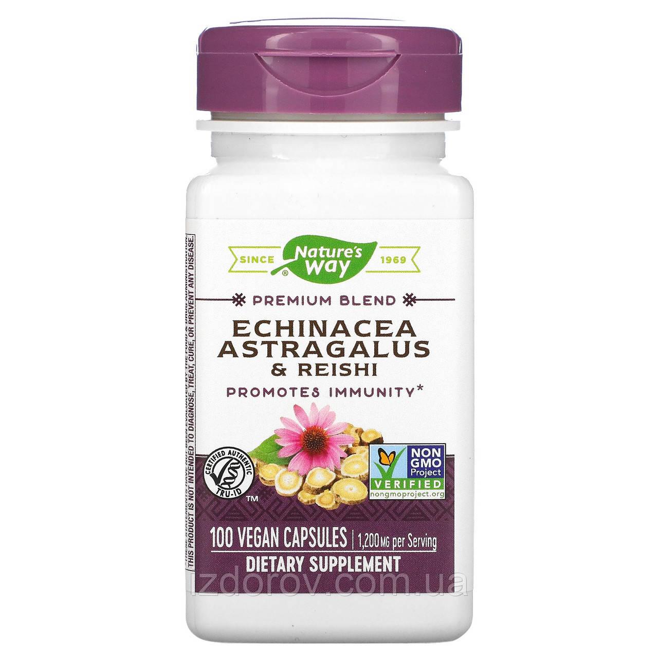 Nature's Way, Ехінацея, астрагал і рейші, для підвищення імунітету та профілактики застуд, 400 мг, 100 капсул