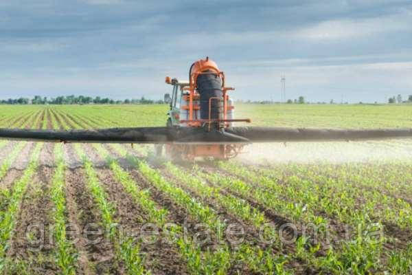 Гербіциди для кукурудзи в Україні