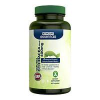 Препарат на основе эхинацеи для поддержания здоровья Betancourt Nutrition Natural Echinacea 400 mg (60 капс)