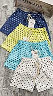 Шорти коттон Зірки для дівчат розмір норма 44-46,колір уточнюйте при замовленні, фото 1