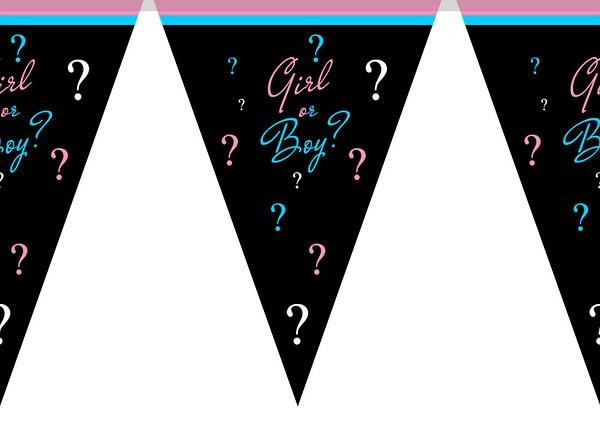 Гирлянды флажки бумажные мальчик или девочка Baby shower