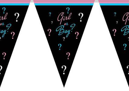 Гірлянди, паперові прапорці хлопчик чи дівчинка Baby shower