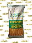 Збруч ФАО 310 Семена кукурузы, фото 2