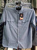 Рубашка мужская с коротким рукавом жатка батальная
