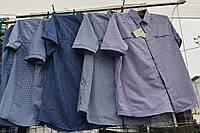 Рубашка мужская с коротким рукавом норма