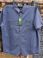 Рубашка мужская с коротким рукавом батальная