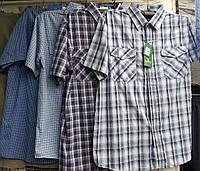 Рубашка мужская с коротким рукавом норма в клетку