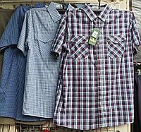 Рубашка мужская с коротким рукавом батальная клетка