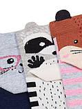 Набір 3 шт. Шкарпетки жіночі укорочені 3D Bross звірятка, фото 2