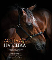 Книга: Лошади навсегда. Иллюстрированная энциклопедия. Тамсин Пикерел