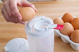 Універсальний блендер BlenderBottle Whiskware EggMixer 3-в-1 591 мл Білий (EggMixer)