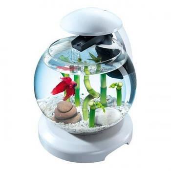 Аквариум Tetra Cascade Globe для петушка и золотой рыбки, белый 6,8 л