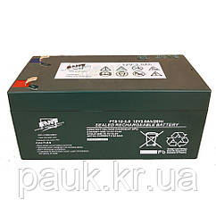 Акумуляторна батарея FAAM FTS 12-2.0, стаціонарний акумулятор