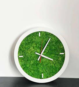 Дизайнерські годинники настінні із стабілізованого моху у білій рамі з дерева 25 см . /Годинник з моху