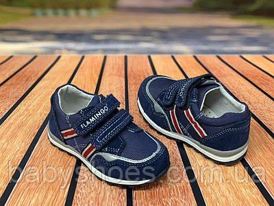 Кожаные кроссовки для мальчика Flamingo р.22, 23 мод. 0108