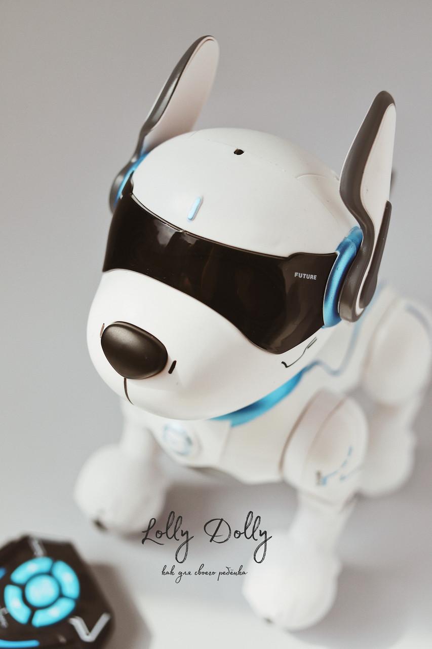 Собака на радиоуправлении Пультовод ZYA-A2884