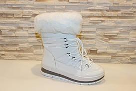 Чоботи дутики білі зимові жіночі С908