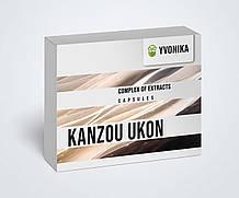 Kanzou Ukon - капсулы для здоровья печени