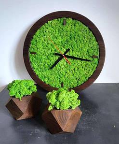 Дизайнерський набір годин з дерева і двох кашпо з мохом/Годинник з моху/Настінні годинники з стабілізованого