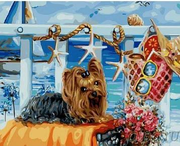 Картины по номерам 40х50 см Brushme Йоркширский терьер на пляже (GX 21473)