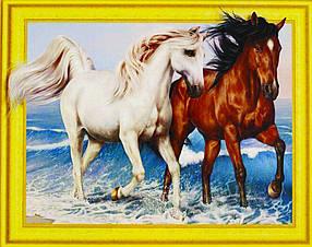 """Алмазна мозаїка 3D з номерами 40*50см """"Пара коней на морі""""027"""