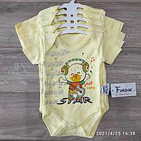 Детское трикотажное летнее боди Star 3-18 мес, цвет уточняйте при заказе, фото 1