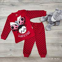 Детский трикотажныйкостюм Lady Bug размер 1-3 года, красного цвета