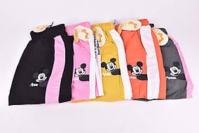 Спортивные штаны детские на девочку COTTON (Арт. ALJ50)   12 шт.