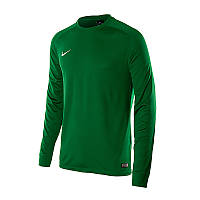 Кофта  PARK GOALIE II JSY Nike 588418-302