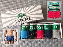 Мужские трусы Lacoste и носки | Трусы Лакоста | Набор мужских трусов и носков, фото 3