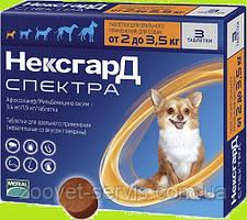 Жевательные таблетки от блох и клещей Merial Нексгард Спектра для собак XS (2-3.5кг) 1 шт
