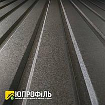 Профнастил для забору ПС 10 матовий Чорний RAL 9005 0.40 мм, фото 2